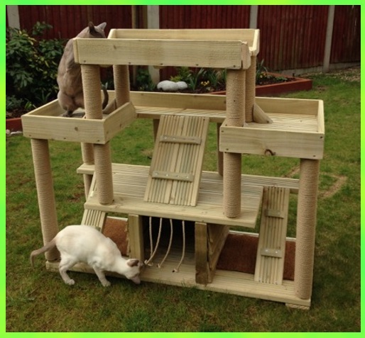 Cat climbing for Build a cat climber